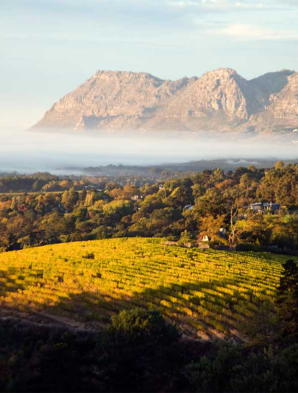 South Africa Holidays. Destination overview