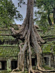 Cambodia Holidays. Destination Overview