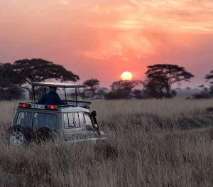Destination Overview. Tanzania and Zanzibar