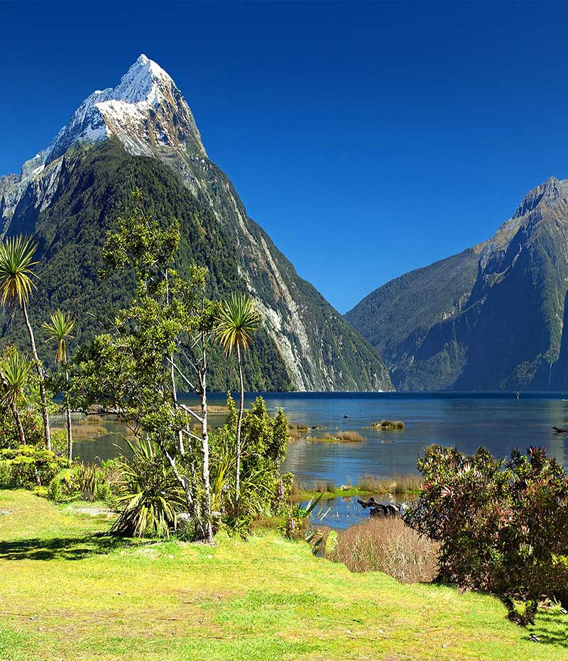 New Zealand holidays. Destination highlights and travel information